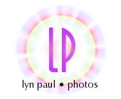 Lyn Paul website 'photos' logo.