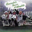 Remember You're A Womble (album cover).